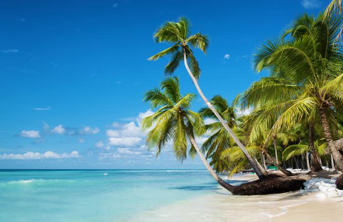 Enjoy Black's Beach Vacation Rentals